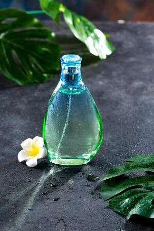 Womens perfume in beautiful bottle with flower and leaves on a black concrete background with bright sunlight