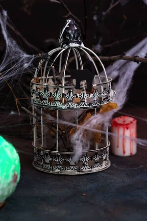 Decorative Spider web in vintage cage for Halloween. Home decoration