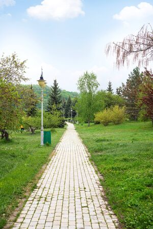 Stone walkway through the city public park with green lawn and trees composition on a blue sky background. Stock Photo