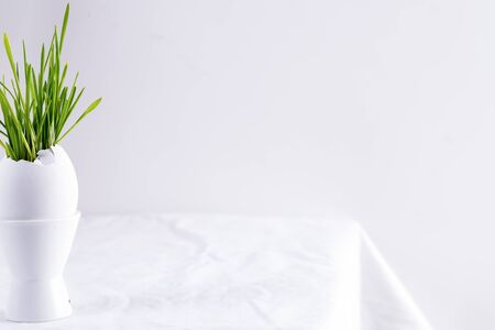 Ceramic cup with fresh green grass in eggshell on a textile white table against light gray background, copy space. Happy Easter congratulation card.