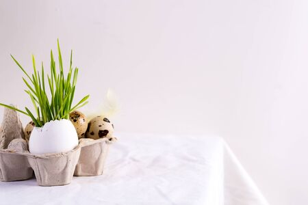 Holiday Easter card with quail eggs in a paper box and fresh green grass in eggshell on a white textile background. Banco de Imagens