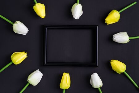 Congrats postcard from freshly picked tender white and yellow tulips with black photo on a black background. Natural holiday backdrop. Flat lay. 版權商用圖片