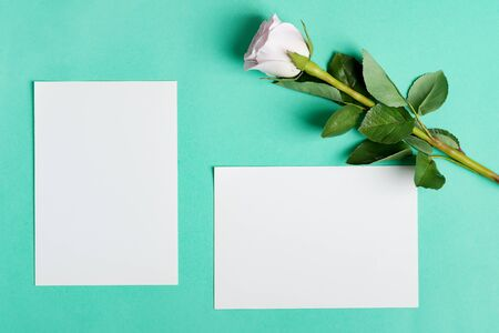 Greeting card with beautiful white rose flower and mockup blank paper sheets for love letter or message on a pastel turquoise background, copy space. Top view.