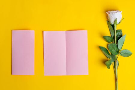 Folded bifold business pink card mockup with beautiful rose flower