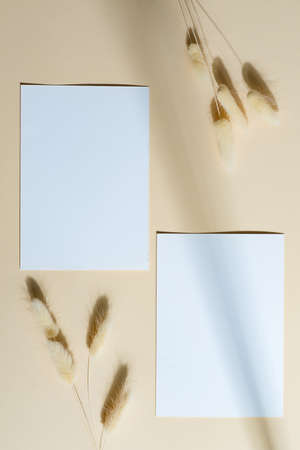 Mockup paper cards with shadow on a beige background.