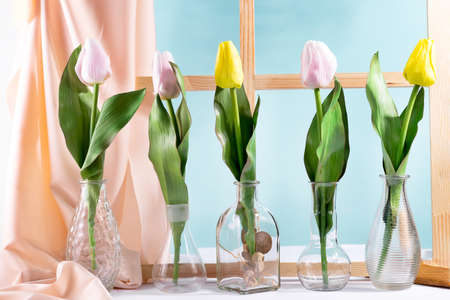 Beautiful tulips in glass vases. Spring flowers for home interior near a window. Decoration for spring.