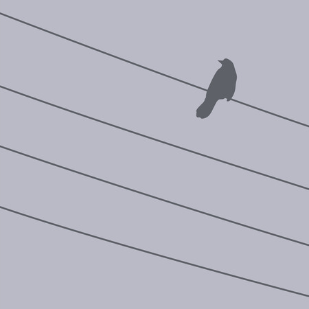 roost: Bird on a wire in the fog. Vector illustration. Illustration