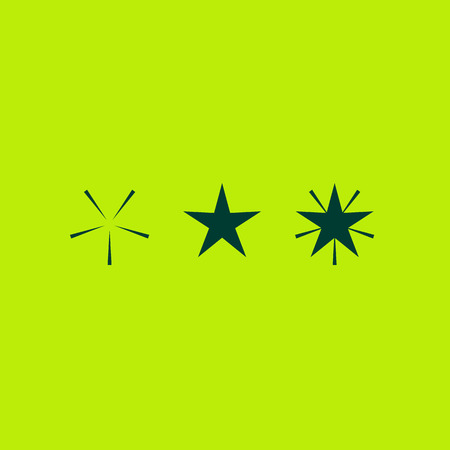 Star icon design template elements. Winter symbol of Christmas and New Year. Sparkling star. Simple vector sign illustration in a modern style.