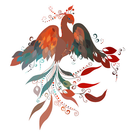 ave fenix: Sunbird hermoso sobre un fondo blanco Vector Vectores