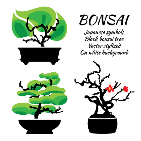 Bonsai, vector set on a white background, illustration template Vector