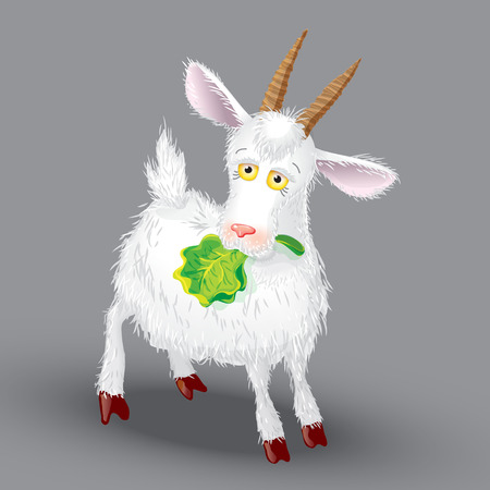 Goat vector on a gray background, in the teeth of lettuce leaf Vector