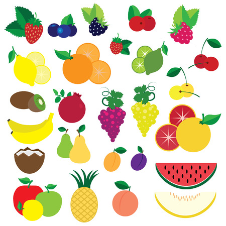 Colorful fruits and berries in hand drawn style vector Vector
