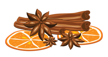 anise: Cinnamon, anise and orange on a white background. Vector illustration