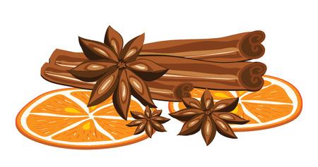 Zimt, Anis und Orange auf einem weißen Hintergrund. Vektor-Illustration
