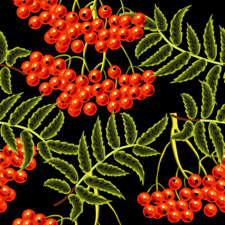 rime frost: Red rowan berries seamless vector pattern. Template for design