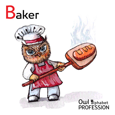 wheaten: Alphabet professions Owl Baker character on a white background Vector Watercolor