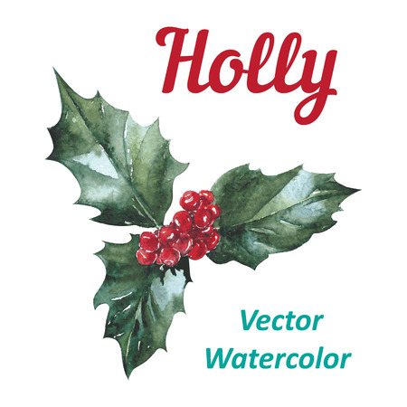 Holly berry icon, Christmas symbol. Vector watercolor Illustration