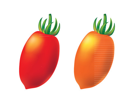 Two cherry tomato on white background, vector