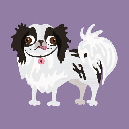 CHIN: Japanese Chin. Vector illustration of a dog