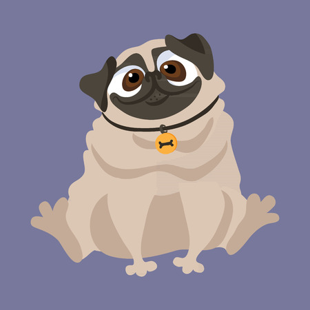 Cute Pug. Vector illustration of a dog Ilustracja