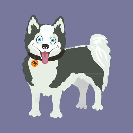 eskimo dog: Yakutian Eskimo dog. Vector illustration of a dog. Illustration