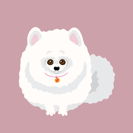 Japanese Spitz. Vector illustration of a dog
