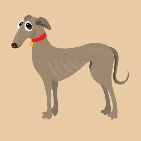 hound: South Russian Hound. Vector illustration of a dog