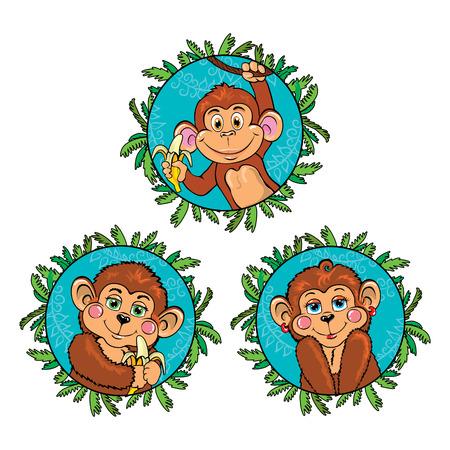chimpances: Mono divertido con un plátano en la mano. Conjunto de vectores.