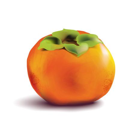 caqui: Caqui fruta no fundo branco.