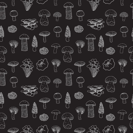 Vector seamless pattern of edible mushrooms for your design.