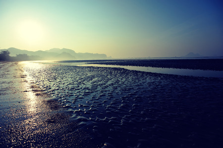 falling tide: sunrise on the beach