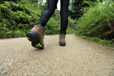 forest trail: woman hiker legs hiking on forest trail Stock Photo
