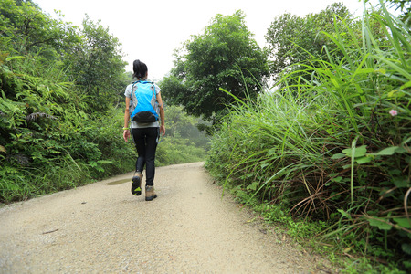 forest trail: woman hiking on forest trail