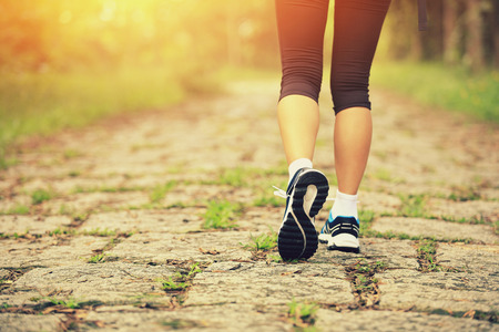 young fitness woman legs walking on forest trail Banque d'images