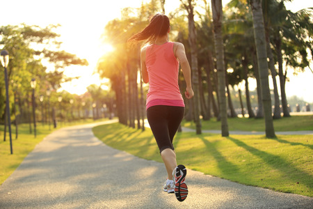 jogging in park: Runner athlete running on tropical park trail. woman fitness jogging workout wellness concept.
