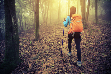 committed: young woman hiker  hiking in spring foggy forest trail