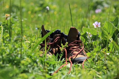 hiking boots: hiking boots on green grass