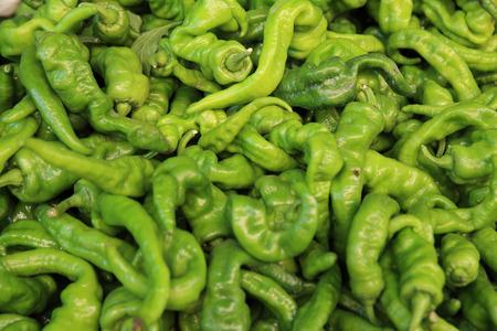 vegetable market: fresh green pepper selling on vegetable market Stock Photo