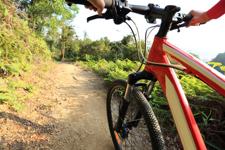 hand brake: riding mountain bike on forest trial