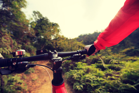 people riding mountain bike on forest trail Stock Photo