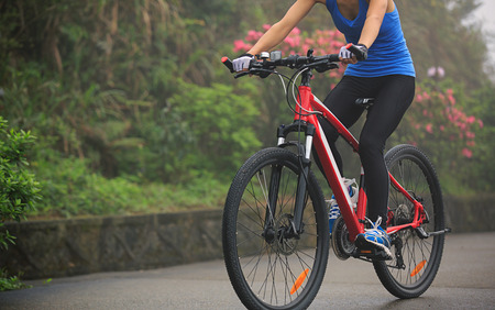 cyclist cycling mountain bike on foggy forest trail Stock Photo