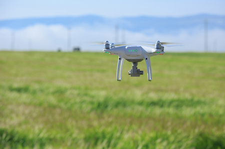drone Flying over wheat field Stock Photo