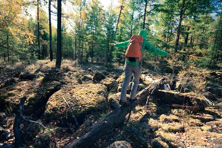 woman backpacker walking on fallen tree log in the autumn forest Reklamní fotografie