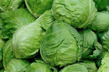 fresh cabbages selling at market