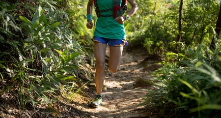 Young fitness woman ultramarathon trail runner running in summer forest