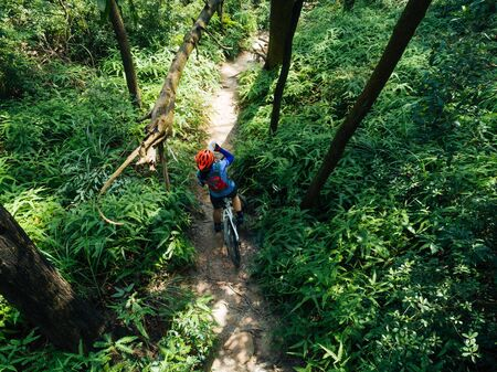 Cross country biking woman cyclist drinking water on tropical forest trail Imagens