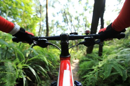 Riding mountain bike on summer tropical forest trail