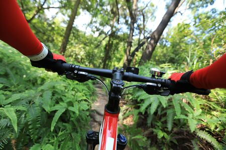 Riding mountain bike on summer forest trail Imagens