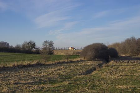 non urban: Landscape of polish fields