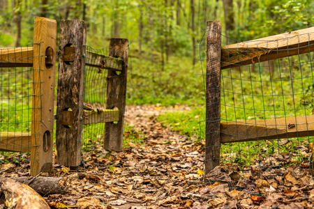 Old Gate on a trail Imagens